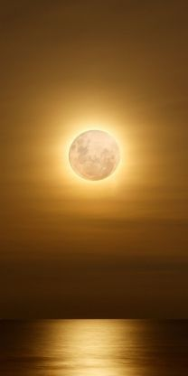 """""""Silver Moon, Almost kills me from waiting ... A wet kiss of light, Seal our love ..."""""""
