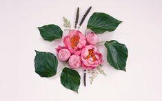 001-deconstructed-bouquets-dl-01.jpg (1856×1161)