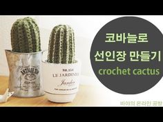 왕초보 코바늘 선인장 만들기 1 - YouTube