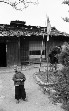 1956--Koinobori      1956年、一尾だけの鯉のぼりだけど・・・。