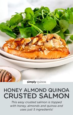 Looking for a healthy salmon recipe that's super simple? This easy crusted salmon is topped with honey, almonds and quinoa and uses just 5 ingredients! Baked in the oven for the most flavorful dinner ever. The best! Healthy Salmon Recipes, Clean Eating Recipes, Seafood Recipes, Dinner Recipes, Cooking Recipes, Crusted Salmon, Healthiest Seafood, Pasta Dishes, The Best