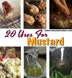 "Previous pinner: ""There are SO many uses for mustard!!"" -- SH: Click-through includes some recipes, but many are not."