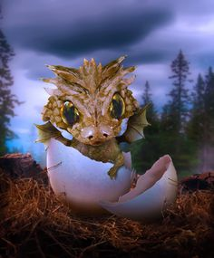 Baby Dragon By Manosart Dragon Egg, Fire Dragon, Magical Creatures, Fantasy Creatures, Fantasy Dragon, Fantasy Art, Mythical Dragons, Dragon Tales, Dragon's Lair