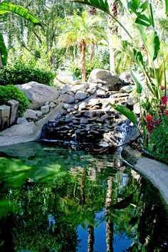 Waterfall and frog pond