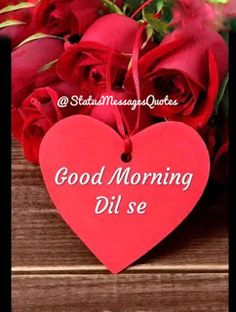 Best Good Morning Status for Love, Friends and Family Funny Good Morning Greetings, Good Morning Wishes Quotes, Good Morning Image Quotes, Morning Quotes Images, Good Morning Picture, Good Morning Flowers Gif, Good Morning Happy Sunday, Beautiful Morning Images, Good Night Sweetheart