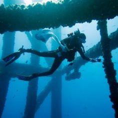 Reef or Hazard? The Fate of Sunken Oil Rigs