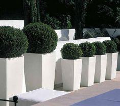 terrace garden - Google Search