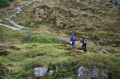 The walking is very varied, from leisurely coastal routes to more challenging walks into the mountains, as here on Justatind.