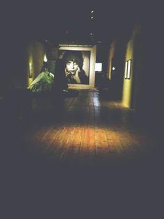 venezia - palazzo fortuny