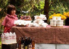 picnic birthday party 7