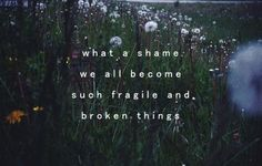 I think the shame is that we forget to honour how fragile and broken we are...