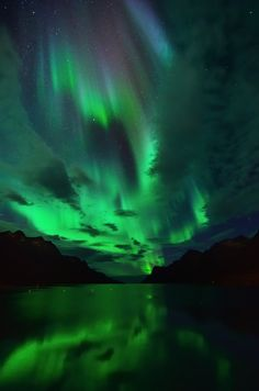 "wowtastic-nature: "" 💙 Northern Lights in Ersfjordbotn on by John Hemmingsen, Tromsø, Norway ☀ Nikon "" Aurora Borealis, Beautiful Sky, Beautiful World, Cool Pictures, Cool Photos, See The Northern Lights, Nikon D7000, Amazing Nature, Night Skies"