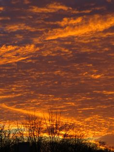 Portrait view of Christmas sky, end of day (all photos in this sequence unaltered and natural colors)
