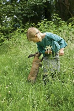 'All good things are wild and free. Thoreau kid with flowers AND bunny Country Life, Country Girls, Country Living, Country Charm, Country Walk, Animals For Kids, Cute Animals, Wild Animals, Farm Animals