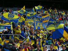 Clermont ASM Yellow Army supporters #Rugby #TOP14 Rugby Championship, Clermont, Top 14, Fans, Army, Yellow, Sports, Auvergne, Gi Joe