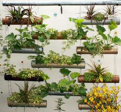 1000 images about cylinder vertical garden offer on for Hanging patio privacy screen