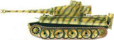SS Pz. Rgt 1, July 1943, Operation Zitadelle camo pattern