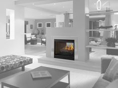 Heat and Glo See-Through AU Gas Fireplace