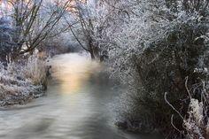 Winter's Coat, River Windrush, Witney, Oxfordshire. by Matthew Jellings