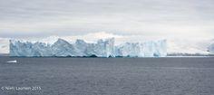 Table iceberg @ Andvord Bay, Antarctica