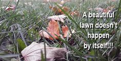 Fall Lawn Care! #Landscaping #Fall #Autumn