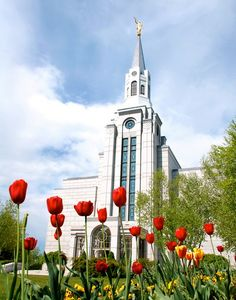Boston Massachusetts Temple #TheCrazyCities #crazyBoston