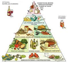 8 habitudes alimentaires pour garder la ligne et être en bonne santé - pyramide alimentaire - nutrition, régime alimentaire et santé