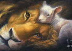 Lion And Lamb Greeting Card featuring the painting Isaiah by Charice Cooper Art Prophétique, Image Jesus, Lion And Lamb, Tribe Of Judah, Prophetic Art, Jesus Art, Jesus Pictures, King Of Kings, Bible Art