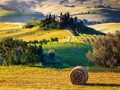 The Best of Tuscany One Day Tour from Florence