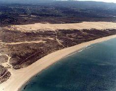 Buscador Iminent Dunas  de Corrubedo.Galicia, España