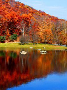 The Rocks in Autumn