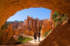 Bucket-list hikes in national parks/Queens Garden Trail, Bryce Canyon National Park, Utah Bryce Canyon, Canyon Utah, Bryce National Park, Canyon Country, Scenery Pictures, Vacation Trips, Vacations, The Great Outdoors, Places To See