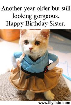 Happy Birthday Little Sister, Sister Birthday Funny, Funny Happy Birthday Messages, Happy Birthday Quotes For Friends, Cute Happy Birthday, Younger Sister Birthday Quotes, Birthday Messages For Sister, Birthday Message For Friend, Birthday Humorous