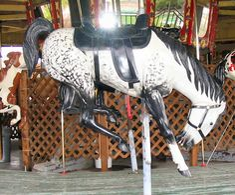 Cowboy Carousel Fiberglass Jumpers