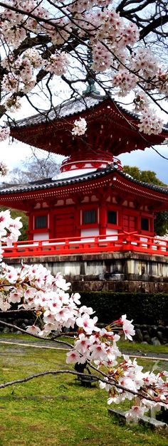 The Most Beautiful Photo Of Kyoto Ever Taken Internet Swoons Over - This amazing image is being called the most beautiful photo of kyoto ever