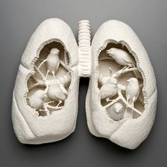 Surreal Ceramics by Kate Macdowell....very unique. Can't decide if I love it or I'm scared by it.