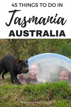 Amazing things to do in Tasmania #Australia #travel #thingstodo #traveltips #traveling #travelersnotebook #tasmania