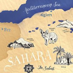 Here is a sneak peek detail of my latest historic map of a Sahara expedition for BBC World Histories magazine. Illustration by Theresa Grieben⠀⠀  . ⠀⠀  . ⠀⠀  #bbchistorymagazine #illustratedmap #artwork #handdrawing #travel #traveling #fez #algeria #algiers  #historicmaps #expedition #mapart #sahara  #theresagrieben #northernafrica #africa #adventure #drawing #illustration #bkkmakes #fennecfox #fennecs #desert #sneak...