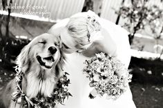 A bride and her dog... Adeline & Grace Photography