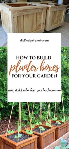 Trendy Diy Wood Planter Boxes How To Build 35 Ideas Container Flowers, Container Plants, Container Gardening, Diy Wood Planter Box, Planter Boxes, Wood Flower Box, Diy Projects Cans, Wood Projects, Diy Baby Gate