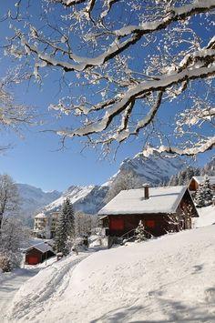 Pictures make life look grey – Winterbilder Winter Szenen, Winter Magic, Beautiful Winter Scenes, Switzerland Vacation, Snow Scenes, Winter Pictures, Life Pictures, Winter Landscape, Belle Photo