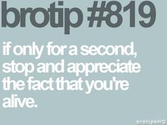 Bro Tip #819 If only for a second, stop and appreciate the fact that you're alive.
