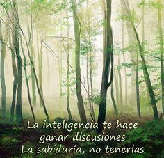 La sabiduria. www.oasisgonzalogallo.com