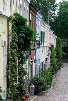 London mews houses