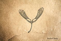Samara Helicopter Seed Rubber Stamp - 2 x 2 inches Maple Seed Tattoo, Tattoos For Women Small, Small Tattoos, Leaf Tattoos, I Tattoo, Stick N Poke Tattoo, Subtle Tattoos, Botanical Tattoo, Future Tattoos