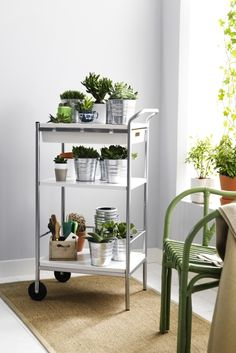 The BYGEL utility cart makes a perfect mobile plant station., allowing you to change it's position at any time. The built in drawer is perfect for storing gloves, pruning scissors and plant feed. Ikea Cart, Ikea Living Room, Studio Apartment Decorating, Apartment Living, Hygge, Room Inspiration, Home Furnishings, Bar, Sweet Home