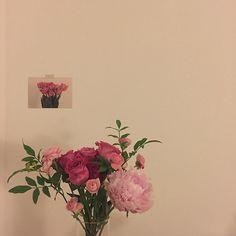 처음이랑 또 다른 느낌. 사람이나 꽃이나 ✨✨ . Flowers Nature, My Flower, Beautiful Flowers, No Rain, Flower Aesthetic, Aesthetic Vintage, Dream Garden, Aesthetic Pictures, Land Scape