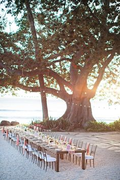 Stunning On the Beach, Wedding Reception or other Party or Event ideas. Pre-spray the area with bug repellent, prior to setting the table.