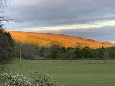 Sunset over Ayle Moor viewed from Williamston Barns. Luxury Holiday Cottages, Holiday Accommodation, Luxury Holidays, Barns, Wilderness, Natural Beauty, Golf Courses, England, Sunset