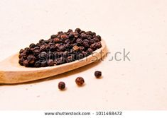 soft focus of spicy black pepper seeds on a wooden spoon (piper nigrum - piperaceae - piperales)